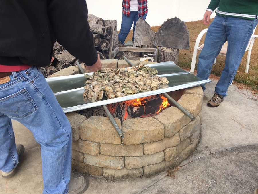 roasting oysters